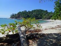 Stranden i den Manuel Antonio nationen parkerar Royaltyfri Bild