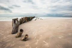 Stranden i Tversted Arkivbild