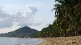Stranden med gul sand och kokosnöten gömma i handflatan, Thailand arkivfilmer
