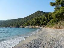 Stranden med sörjer närliggande Fotografering för Bildbyråer