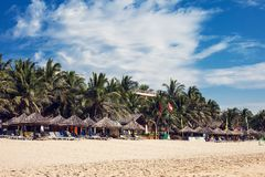 Stranden med sand och gömma i handflatan arkivfoto
