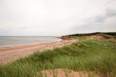 Stranden på den Robinsons ön på PEI royaltyfria bilder