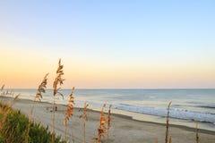 Stranden på det yttre packar ihop royaltyfri fotografi