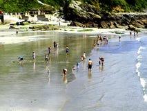 Stranden på Looe, Cornwall. Arkivfoton