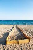 stranden sparar sköldpaddor Fotografering för Bildbyråer