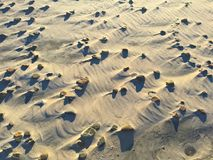 Stranden stenar och skuggar tätt upp Royaltyfri Bild