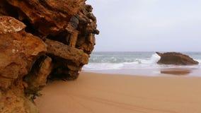 Stranden vaggar och surfar stock video
