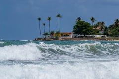 Stranden van Brazilië - Genipabu RN royalty-vrije stock foto's