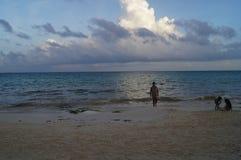 Stranden van Mexico Stock Foto's
