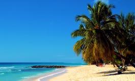 Stranden van Roatan Honduras stock fotografie