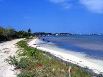 Stranden van Utila Stock Fotografie