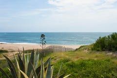 Stranden van Zuid-Amerika 4 Royalty-vrije Stock Foto