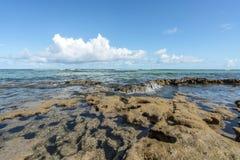 Stranden vinkar i ett tropiskt korallbildande på den Carneiros stranden per Arkivbilder