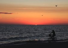 strandflorida solnedgång Royaltyfria Foton