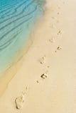 strandfotmoment surfar tropiskt Royaltyfri Foto