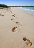 strandfotspår Arkivfoton