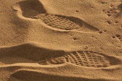 strandfotspår royaltyfri bild
