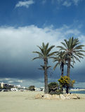 strandgarrucha town Arkivbilder