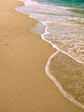strandgryning Arkivbild