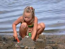 strandgyckel royaltyfria foton
