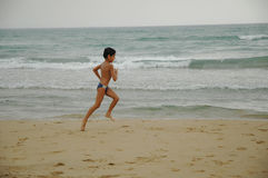 strandgyckel royaltyfria bilder