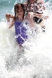 strandgyckel Fotografering för Bildbyråer