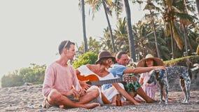 strandgyckel som har folkbarn Helg på ön Företag av roligt sjunga för vänner med en gitarr och en rolig hund lager videofilmer