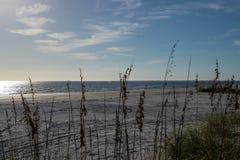 Strandhafer im Vordergrund vom Golf von Mexiko bei Sonnenuntergang stockfotos