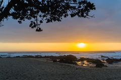 Strandhav Dawn Rocks Tree Silhouetted Arkivfoton