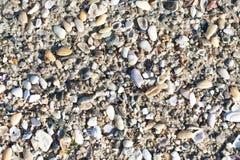 Strandhintergrund Stockfoto