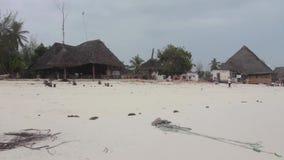 Strandhutten en palmen stock videobeelden