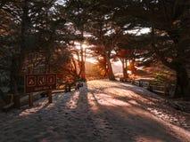 Strandingång på Pfeiffer den stora Sur delstatsparken royaltyfri bild