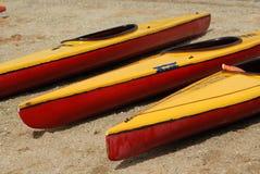 strandkanoter Fotografering för Bildbyråer