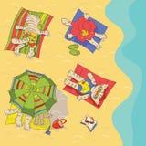 strandkatter Royaltyfri Foto