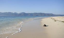 strandkokosnöt Royaltyfria Foton