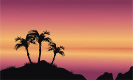 strandkokosnöten gömma i handflatan Fotografering för Bildbyråer