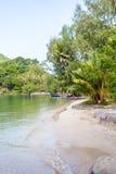 strandkokosnöten gömma i handflatan tropiskt Royaltyfria Foton