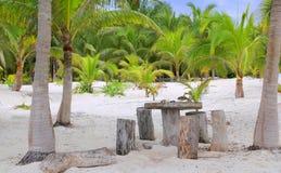 strandkokosnöten gömma i handflatan tulum för platstabelltrees Arkivbild