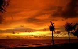 strandkrabisolnedgång Royaltyfria Foton