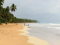 Strandkust op Samana, Dom rep stock foto's