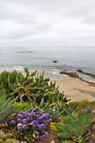 strandlaguna sikt royaltyfri foto