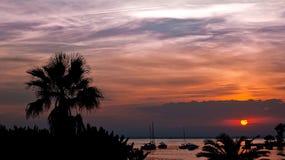 strandlamanga Arkivbilder