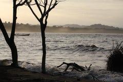 Strandlandskap i Costa Rica Arkivbild