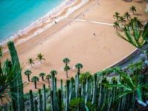 Strandlandskap i Tenerife fotografering för bildbyråer