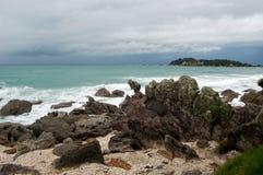 Strandlandskap, Tauranga stad, norr ö, Nya Zeeland Arkivbilder