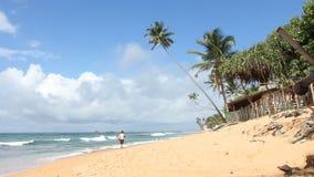 Strandlevensstijl stock videobeelden