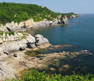 strandliggandehav Fotografering för Bildbyråer