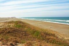 Strandlinje med blå himmel arkivbilder