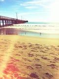 Strandliv Royaltyfri Bild
