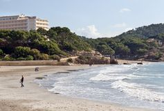 strandmajorcapaguera fotografering för bildbyråer